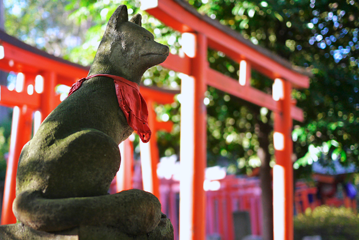 Guarding Fox in Nezu Shrine