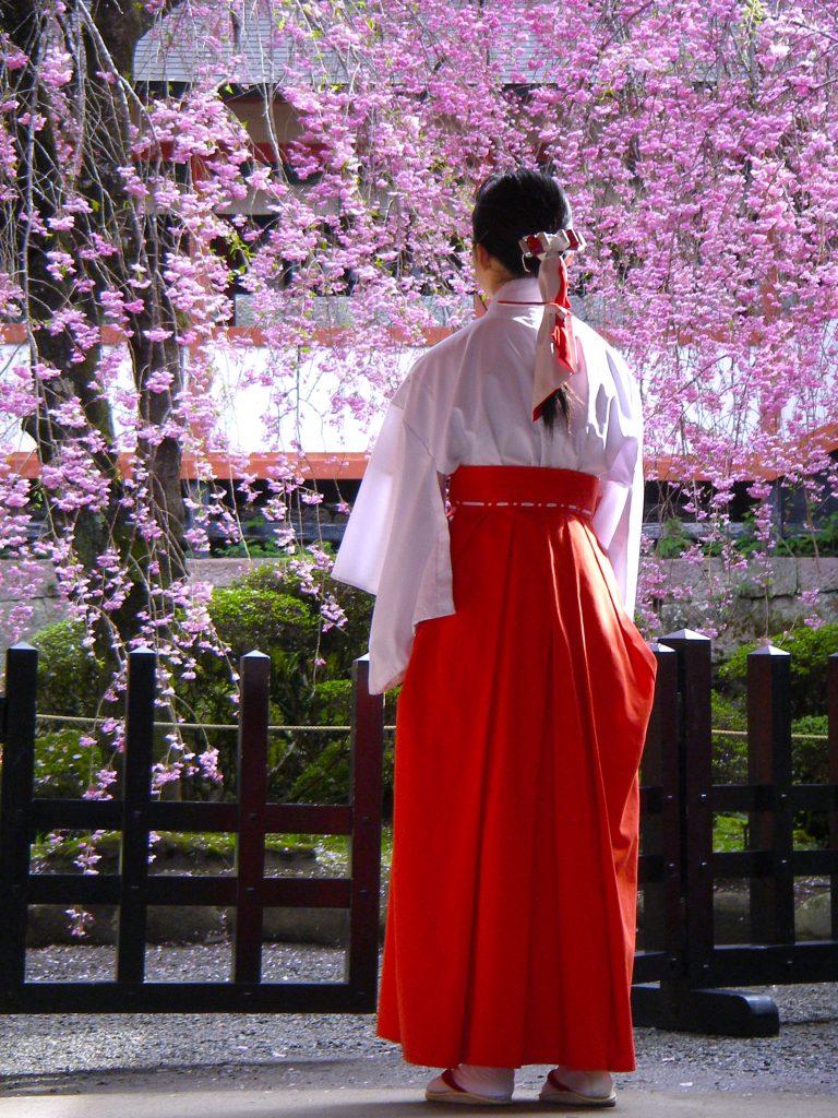 Miko in spring