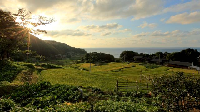 Satoyama and Satoumi (home sea), PHOTO by Go Tabinuki