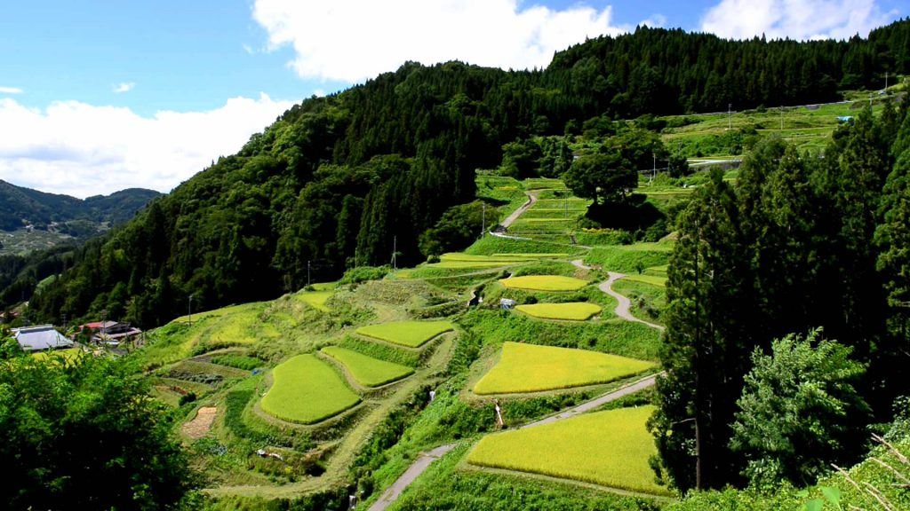 Satoyama in Shinshu