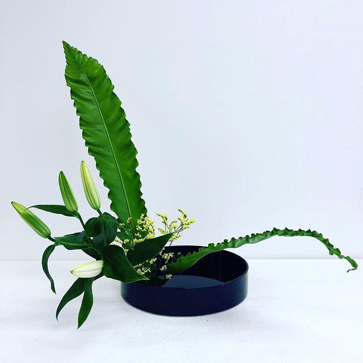 Ikebana, Moribana