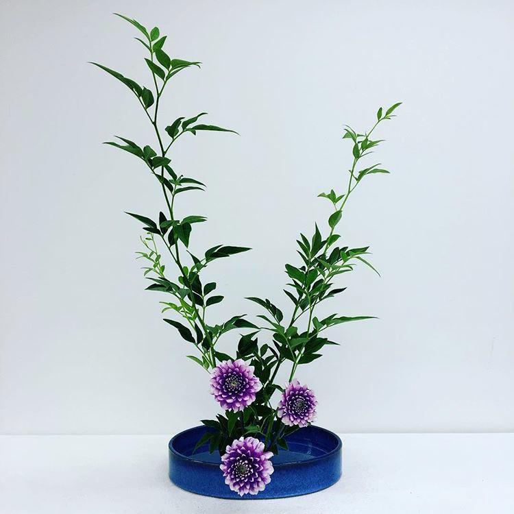 Ikebana, Moribana Upright style