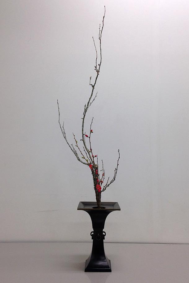 Ikebana, Shoka style