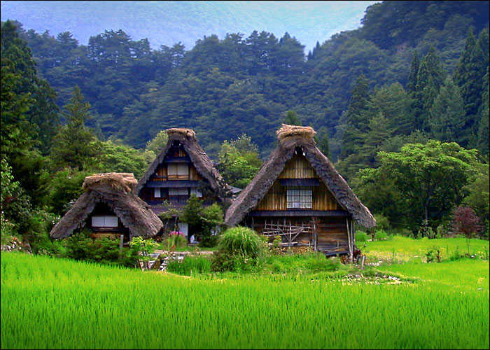 Houses in Shirakawago in Gifu, the world heritage