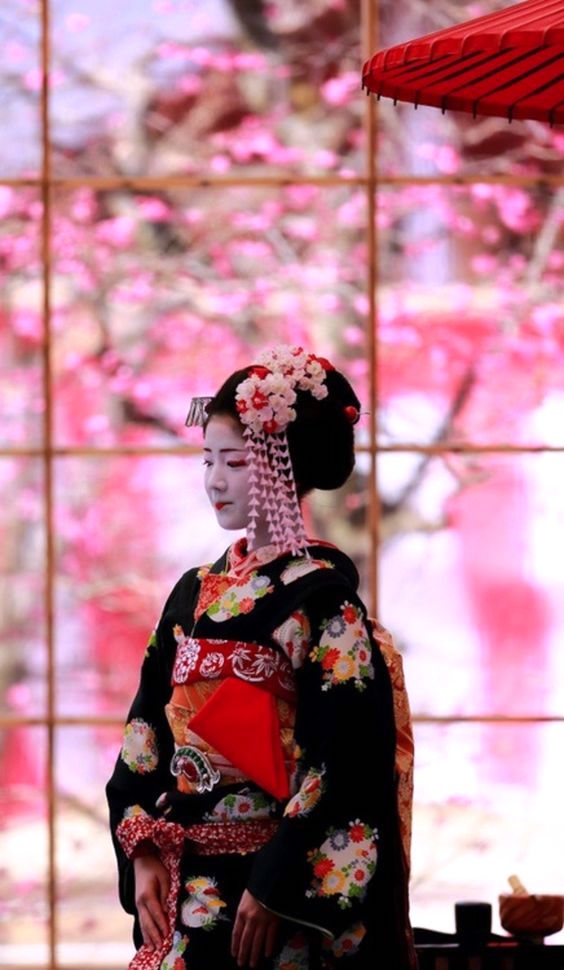 A Maiko with Elaborate Hairpins