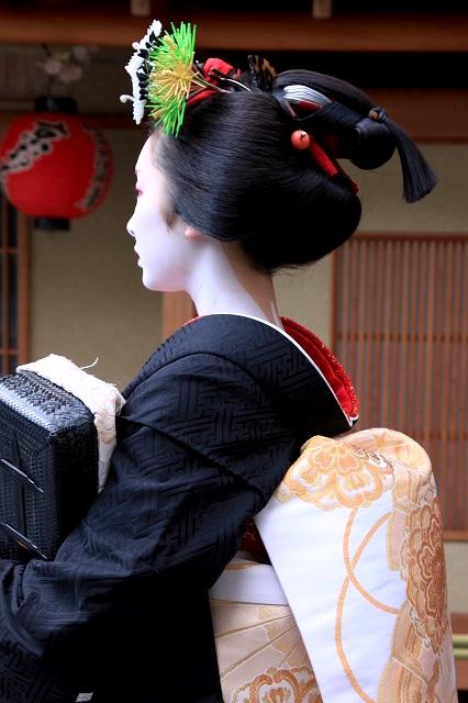 Maiko's Hairstyle, Sakkou