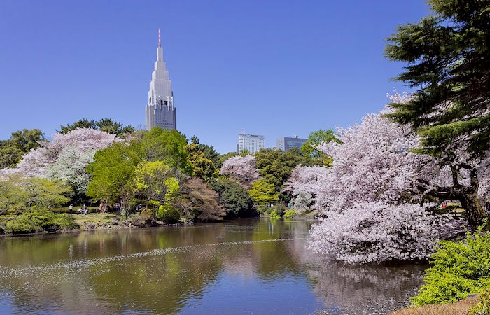 Shinjuku_Gyoen_National_Garden