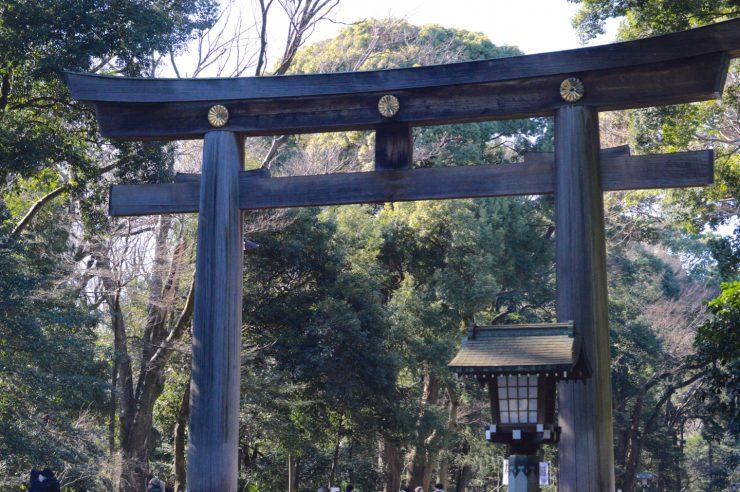 chrysanthemum crest on the torii gate at Meiji Jingu Shrine
